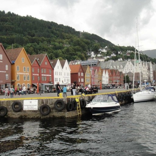 Norway in a nutshell® tour from Bergen