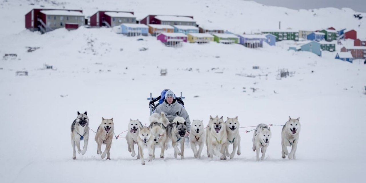 The Big Arctic Five in Greenland