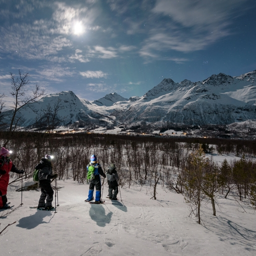 Star Walk – a night snowshoeing tour